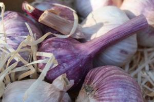 garlicclose